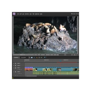 Střih videa v Adobe Premiere Elements